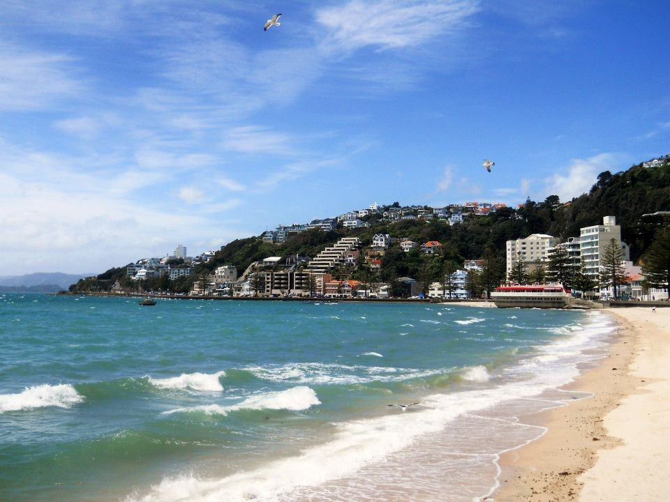 Oriental Bay Wellington